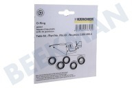Karcher 28809900  O-ring O-ringen set 5 stuks van pistoolgreep of jet pipe HDS580, HDS760